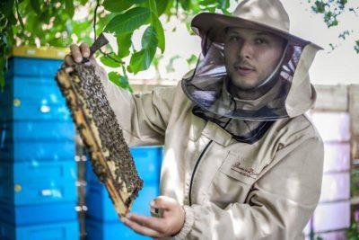 Pszczelarz - pasieka na zastawiu - zator